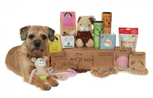 Woof Box Pet Subscription Gift Box