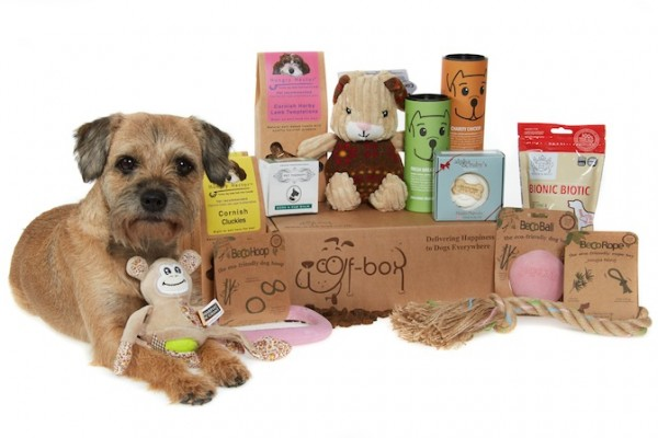 Woof Box Pet Subscription Gift Box