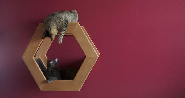 habicat cat ledge