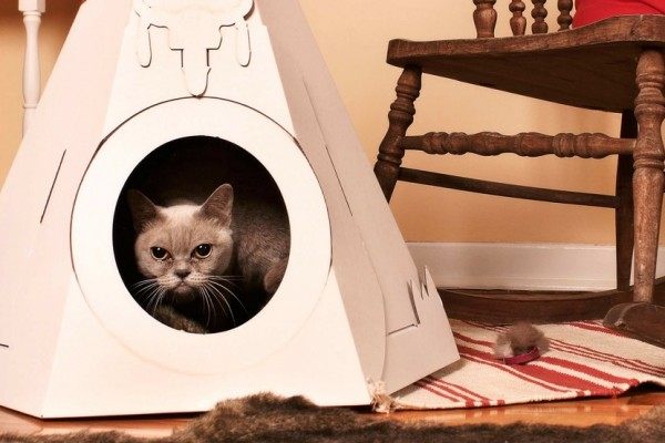 TIPIS AND TENTS FOR CATS AND DOGS
