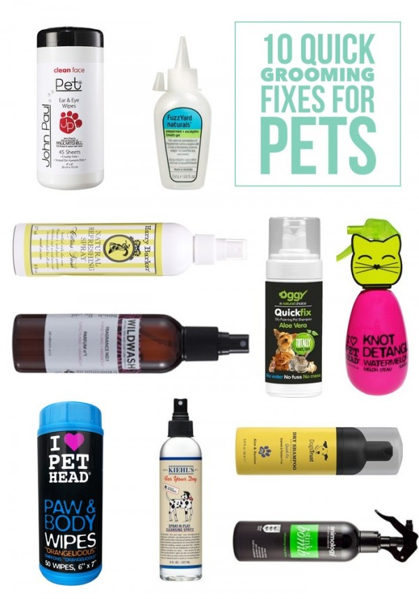 Great dry shampoos and grooming products for pets