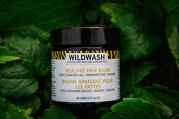 natural healing paw balm for dogs by wildwash
