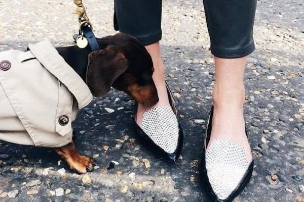 sergio the shoe hunter fashion week the outnet