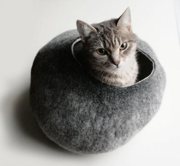 vaiva nat grey cat cave