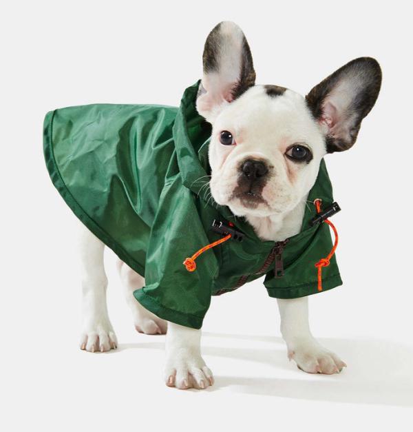 wagwear dog raincoat green