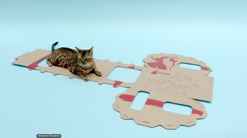 cardboard cat caravan make them roar kickstarter