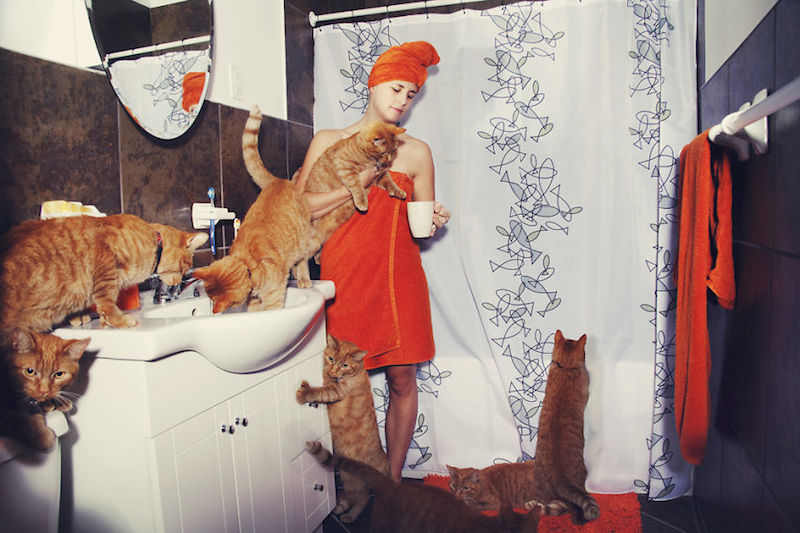 Crazy Cat Lover Photography by Andréanne Lupien