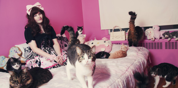Crazy Cat Lover Photography by Andreanne Lupien