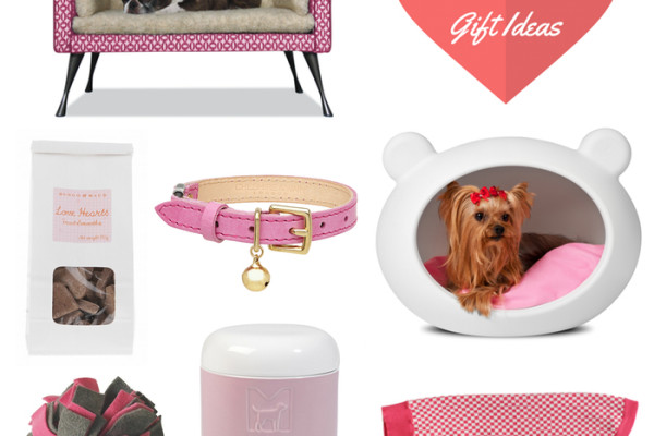 VALENTINES GIFTS FOR DOGS AND CATS