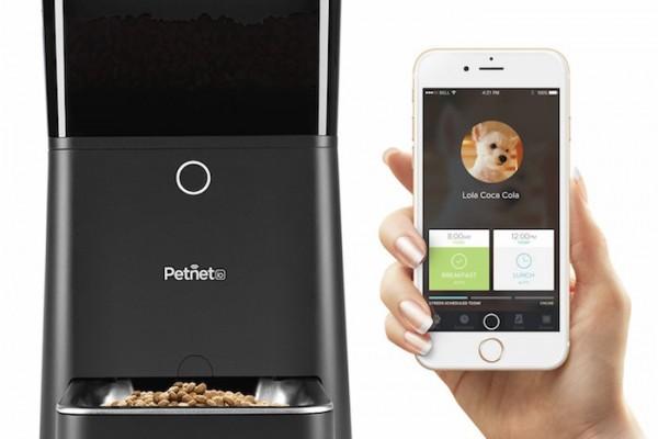 petnet smart automatic pet feeder