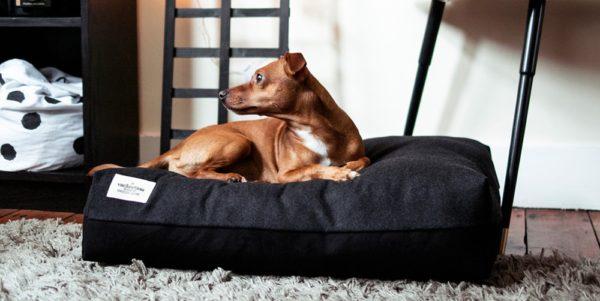 Vackertass dog beds