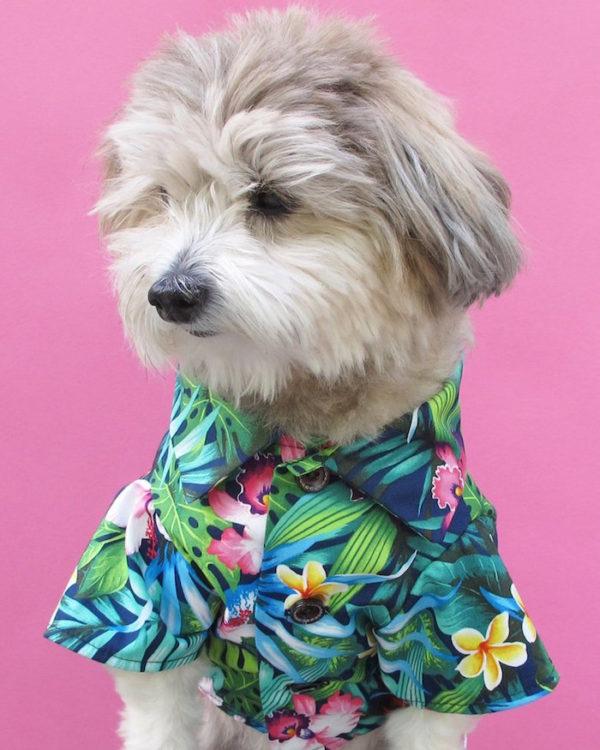 dog threads tropical summer bbq dog shirt