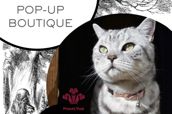 cheshire and wain pop up shop