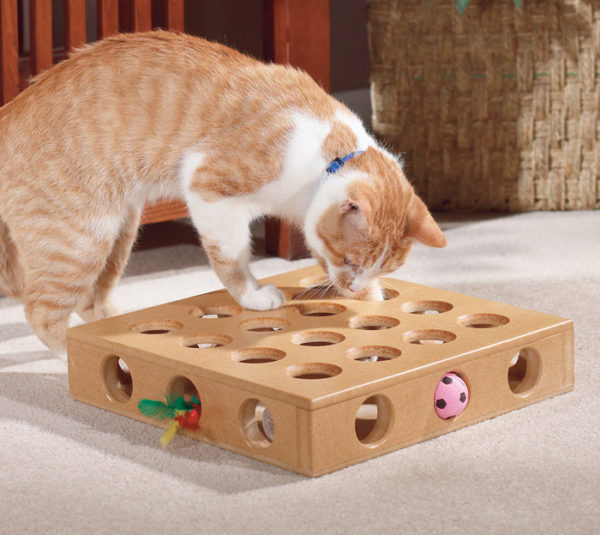 SMART CAT PEEK A PRIZE INTERACTIVE GAME