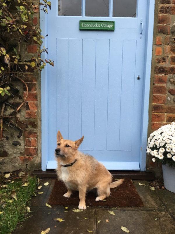 Little Thornage Dog Friendly cottage norfolk