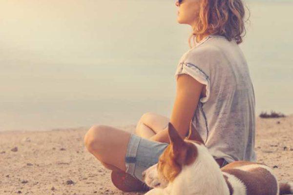 best dog friendly beach hotels in the UK