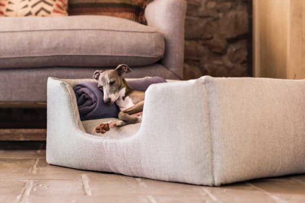 charley chau designer dog beds