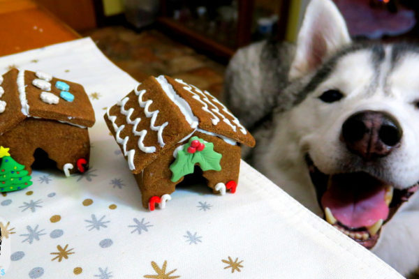 gingerbread house for dogs