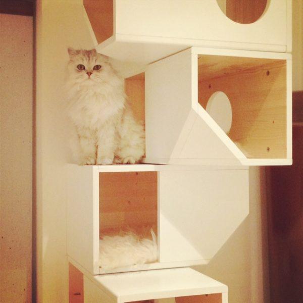 Catissa cat tower