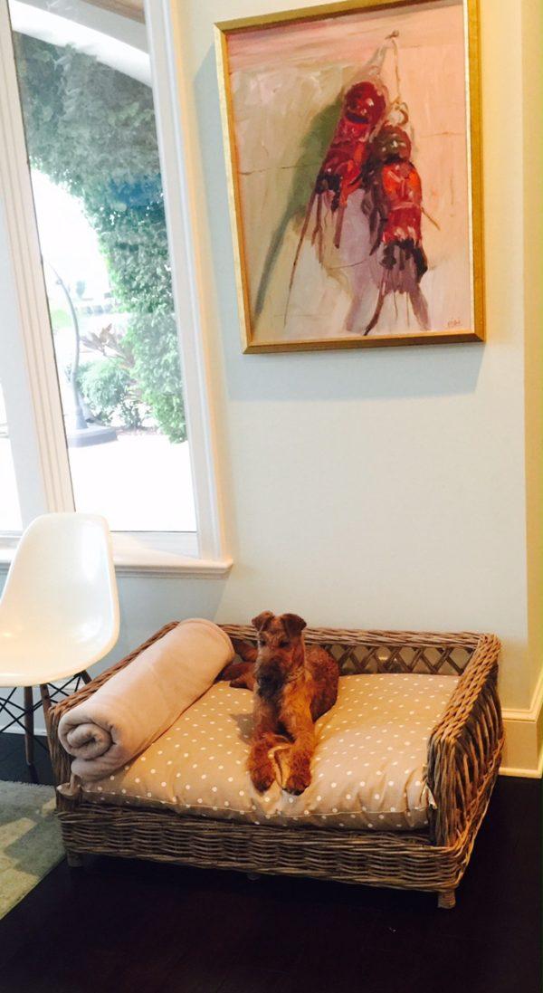 Charley Chau Rattan Dog Bed