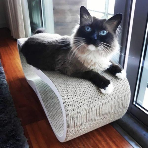 LUI cat scratcher white MyKotty