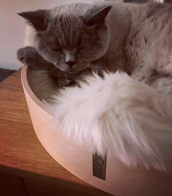 Anello cat bed MiaCara