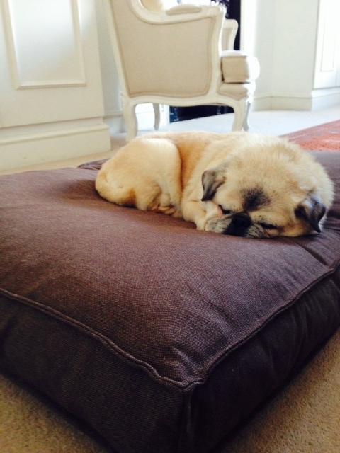 Lino Cushion Dog Bed MiaCara