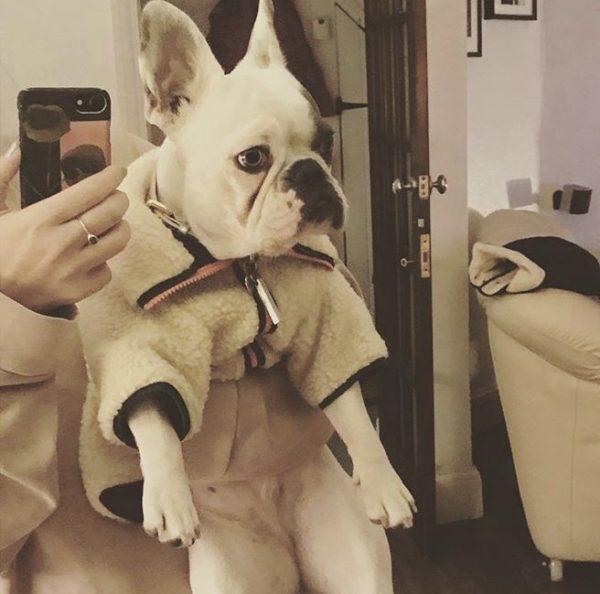 Fetch and follow dog fleece jacket