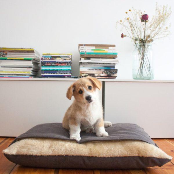 Snuggle dog bed Charley Chau