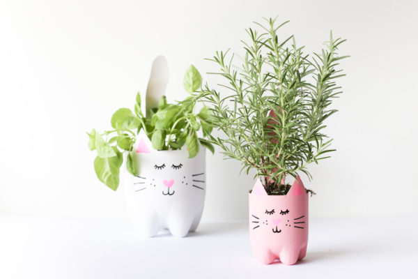 Soda bottle cat planters