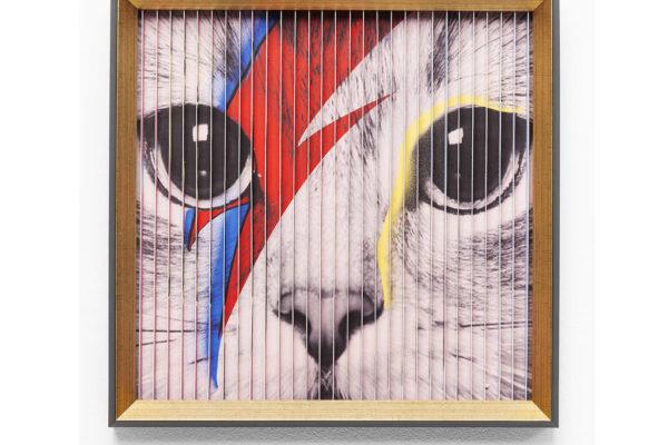 3D Cats Frames Print by I Love Retro