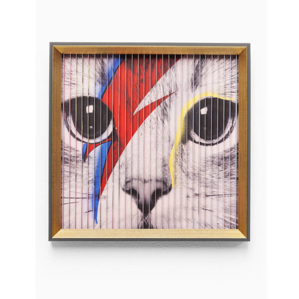 3D Cats Frames Print by I Love Retro