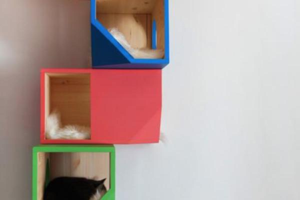 Modular Cat Climbing Tower