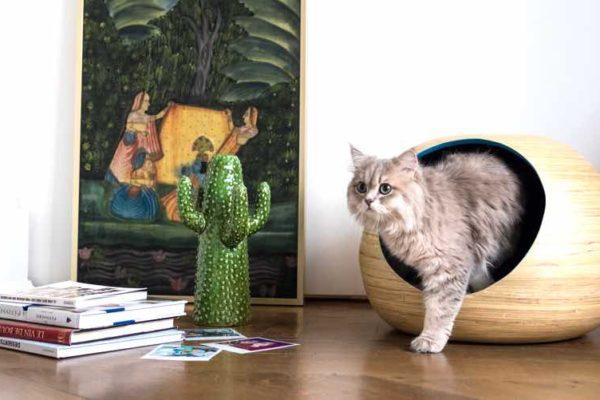 dandy cat cat furniture
