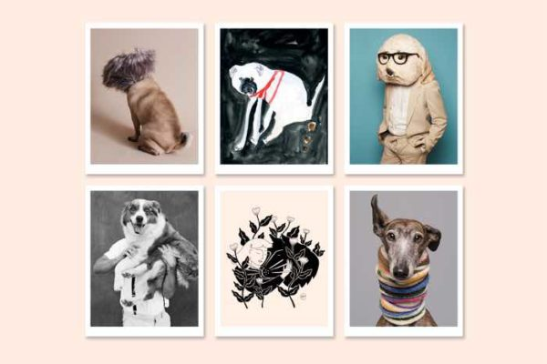 fetch and follow dogs and design pop up