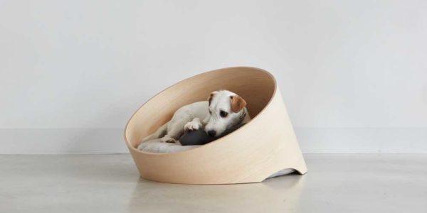 miacara covo dog bed